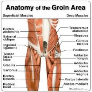 groin-injury